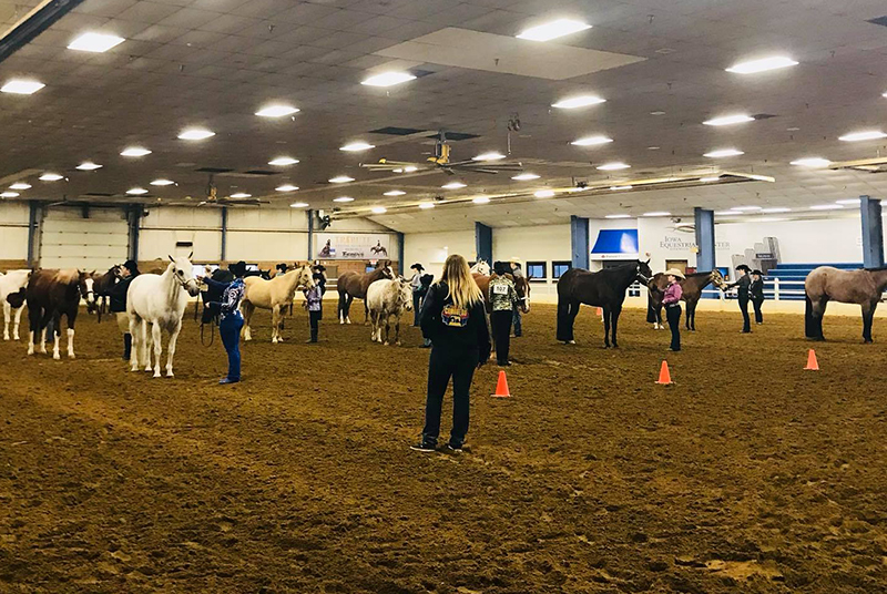 Grinnell Saddle Club Jackpot Added Money Open Show